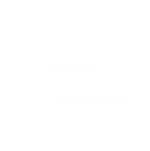 Whaleshark Productions